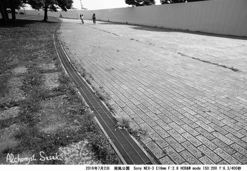 潮風公園DSC08863a