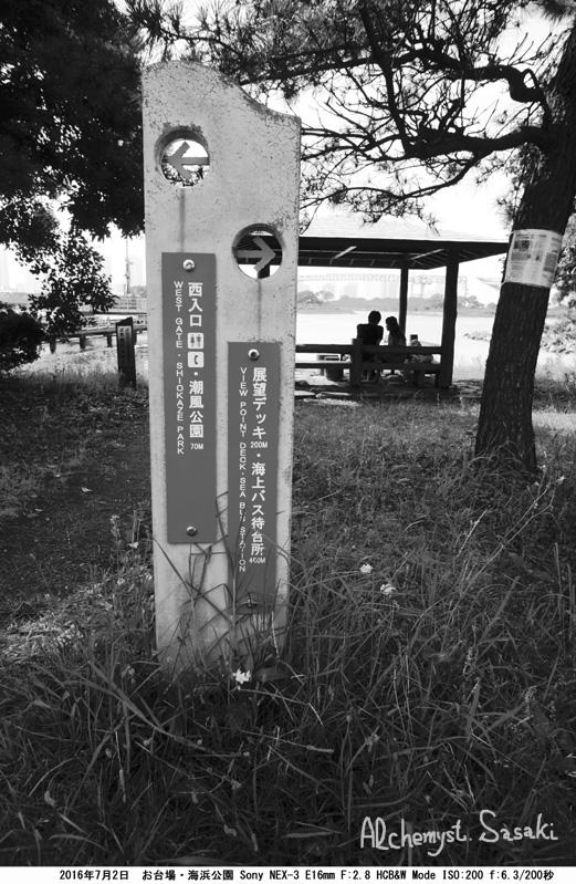 海浜公園DSC08881a