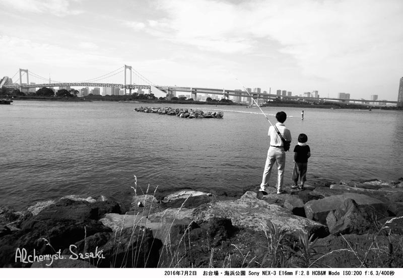 海浜公園DSC08885a