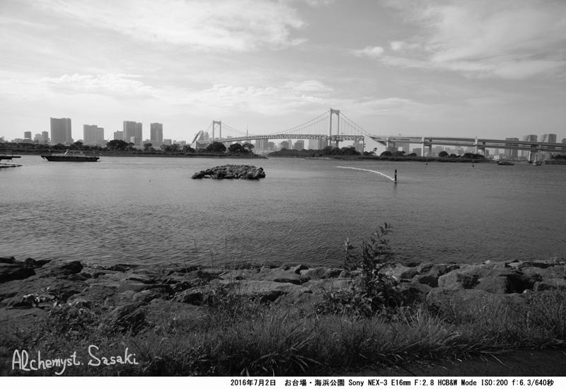 海浜公園DSC08895a