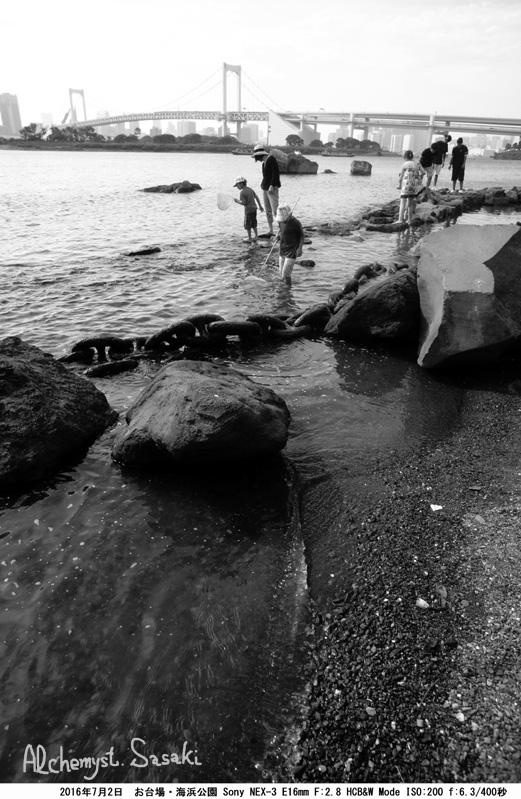 海浜公園DSC08909a