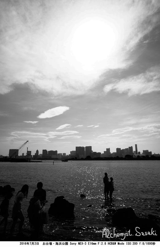 海浜公園DSC08913b