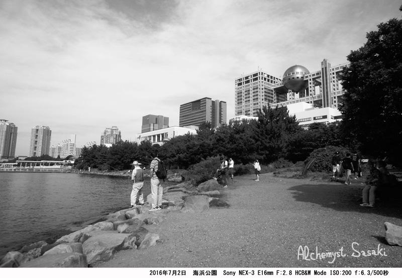 海浜公園DSC08935a