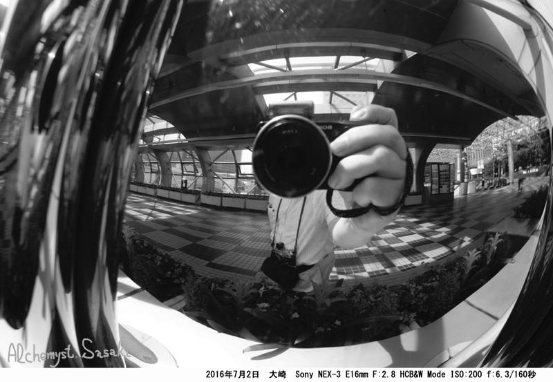大崎DSC08736a