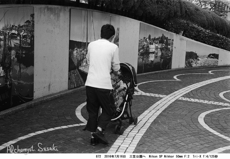 三笠公園872-17