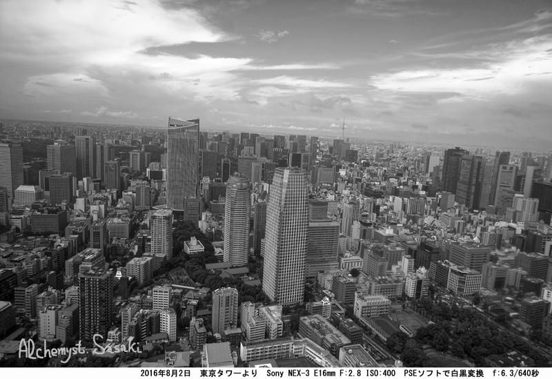 東京タワーDオプチマイザー白黒DSC00083(2)
