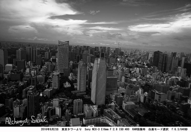 東京タワートーンカーブ白黒DSC00083
