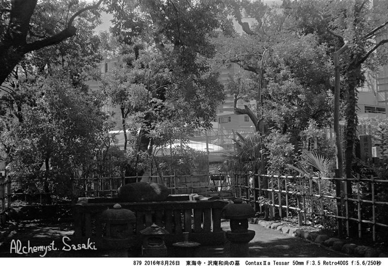 居木橋879-31