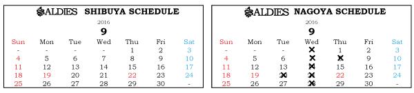 ブログ用営業日カレンダー201609