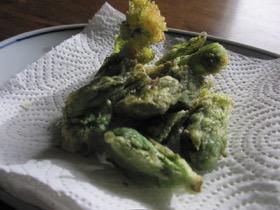 タンポポサラダ