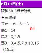 crown611_1.jpg