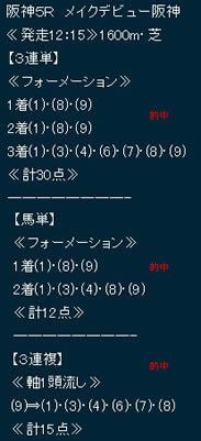 hy910_1.jpg