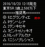 sw1023_1.jpg