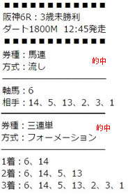 tq64_2.jpg