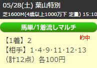 up528_4.jpg