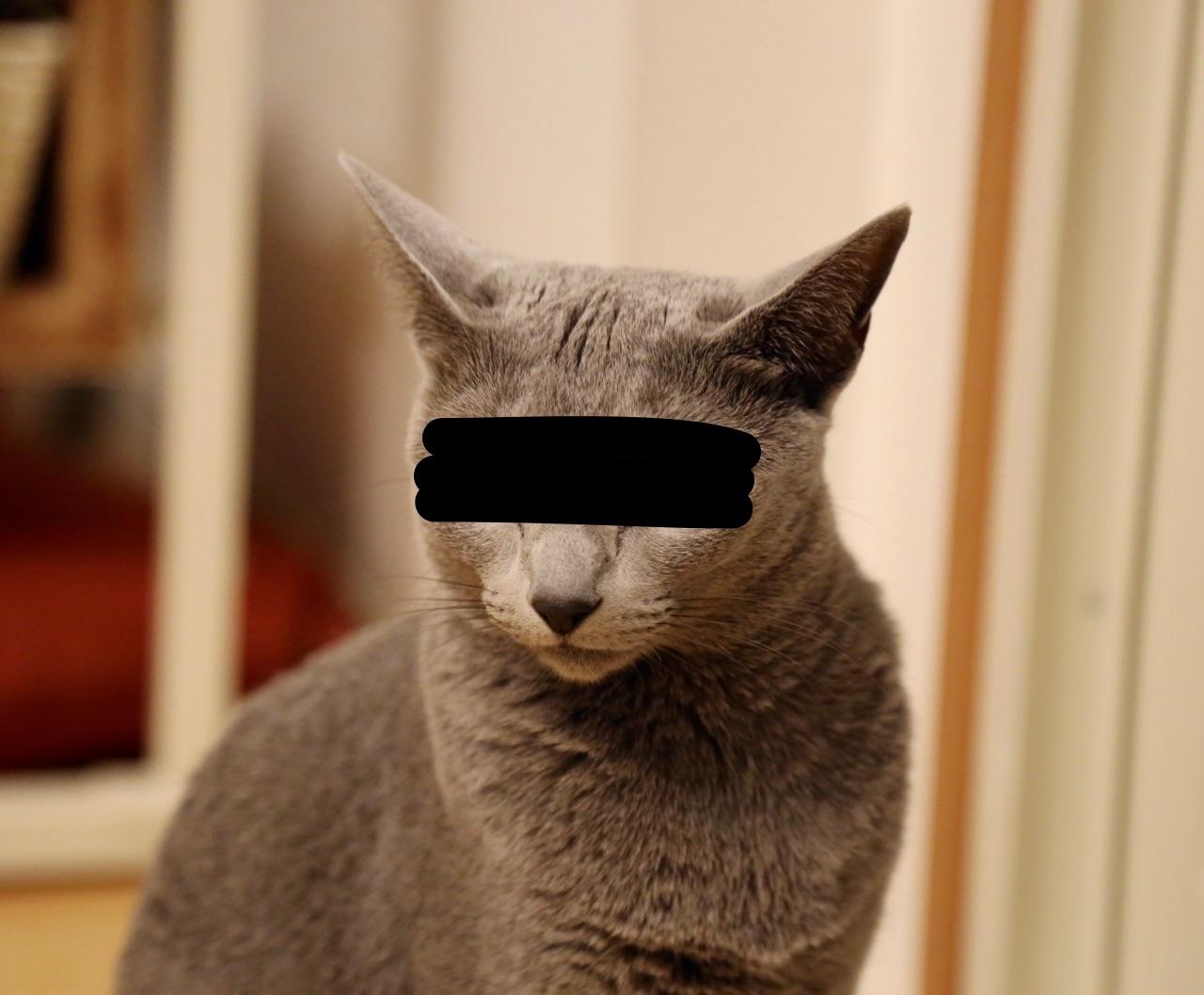 「犯人 目隠し」の画像検索結果