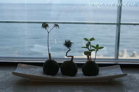 160710淡路島旅行ロビー