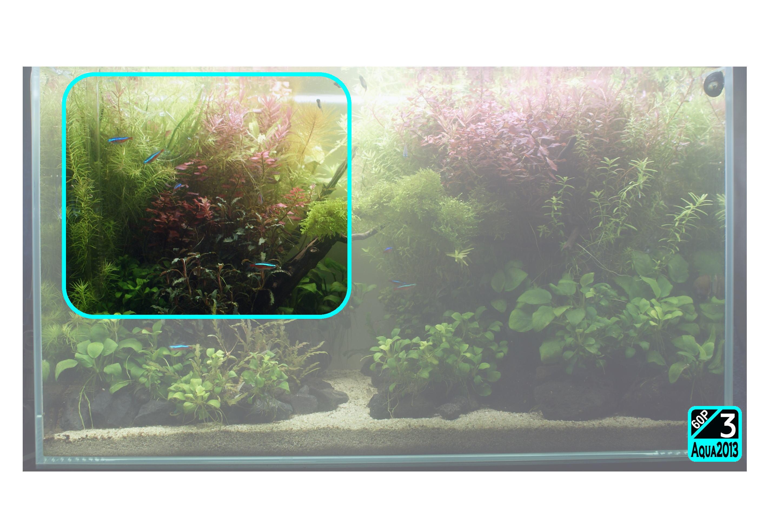 Aqua2016_0925c_002.jpg