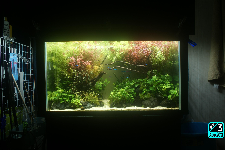 Aqua2016_1003c_010.jpg