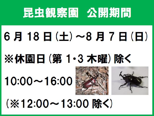 昆虫園公開期間