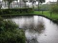 園路、「池」となる