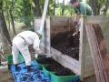 園内での落ち葉リサイクル