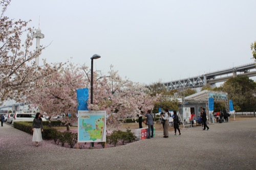 0084:沙弥島・西ノ浜の家 沙弥島観光案内所