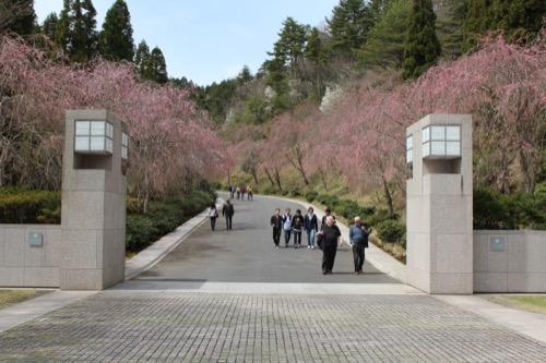 0099:MIHOMUSEUM アプローチ入口