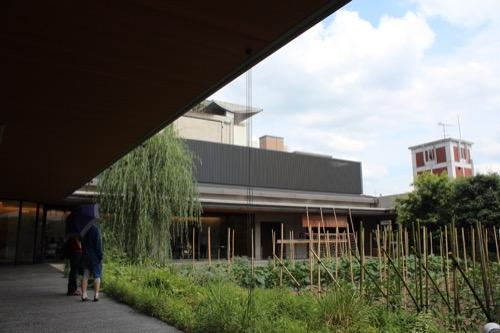 0122:京都八百一本館 屋上農園②