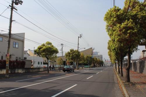 0131:香川県立体育館 西側大通りから体育館をみる