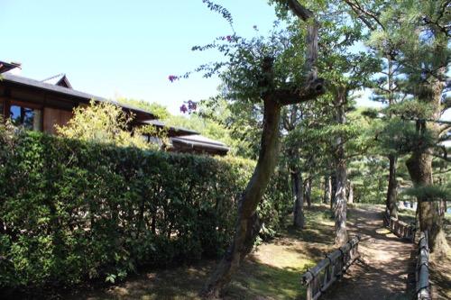 0156:松柏美術館 松庭へ続く道と旧佐伯邸