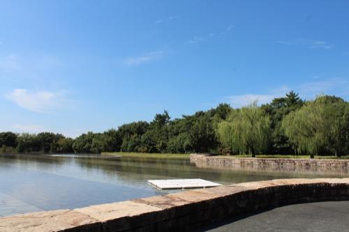 0167:豊田市美術館 池の対岸へ①
