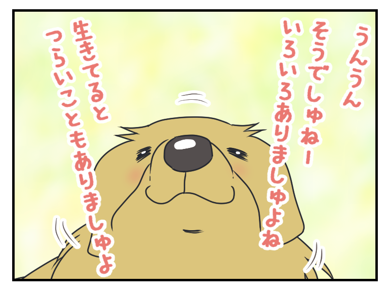 20160406-1.png