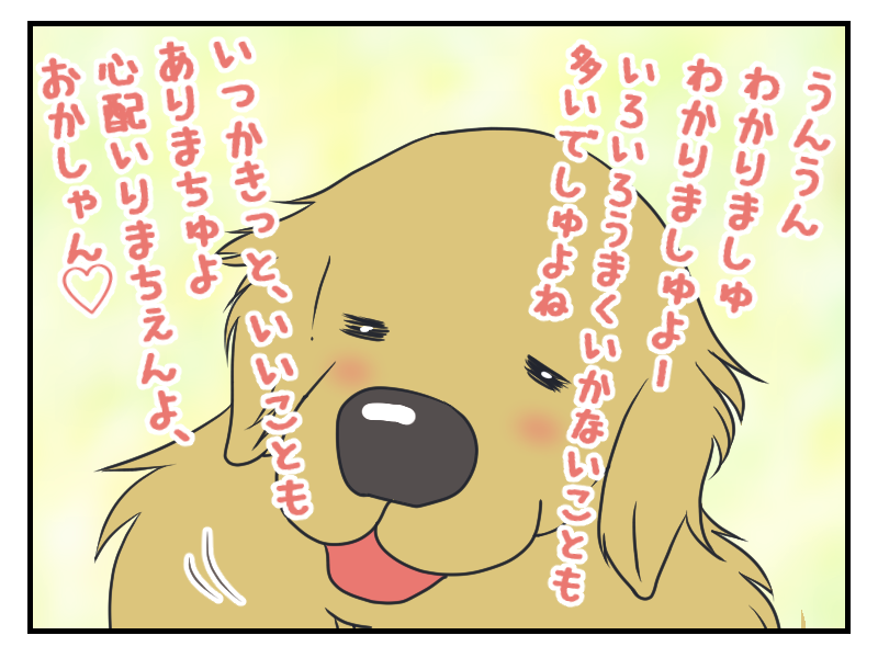 20160406-3.png