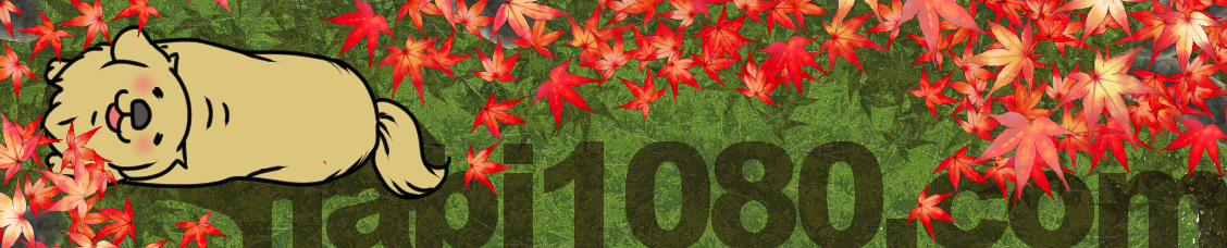 logo-November-.png