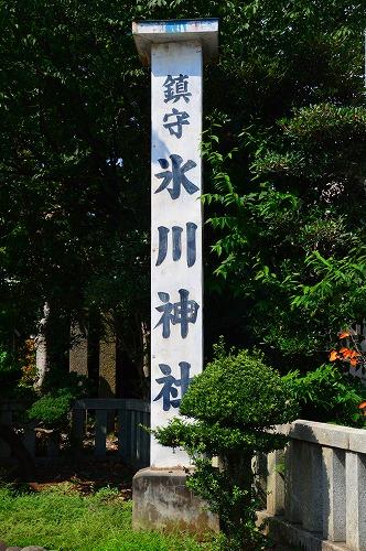 DSC_氷川6288