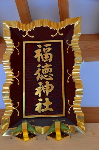 DSC_福7237