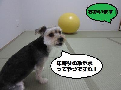 バランスボール4