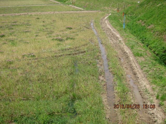 1年中水が抜けない圃場