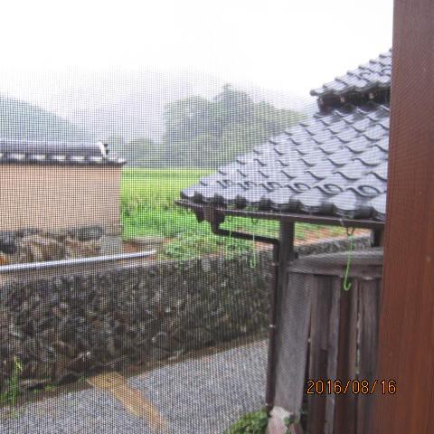 久し振りの雨