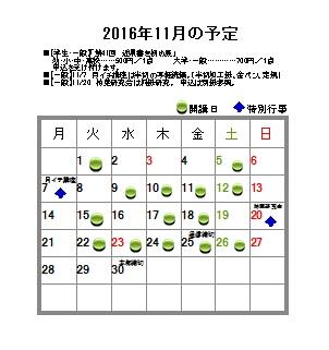 16_11.jpg