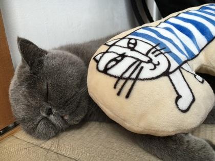 リサラーソンの枕