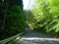 160416善峯寺駐車場下の激区間