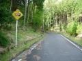 160502多羅尾林道を上って三国越林道へ