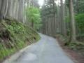 160604百井峠鞍馬側の激坂を登坂
