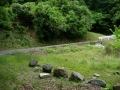160604陀羅谷から東笠取方面への上り