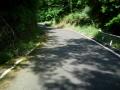 160702三国越林道から野殿に向けてかなり厳しい上り