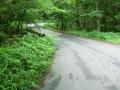 160716柞原林道を下る