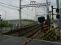 160814京阪本線小金川踏切