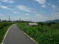160906桂川に沿って自転車道を南下